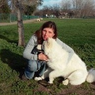 Jelena's dog day care