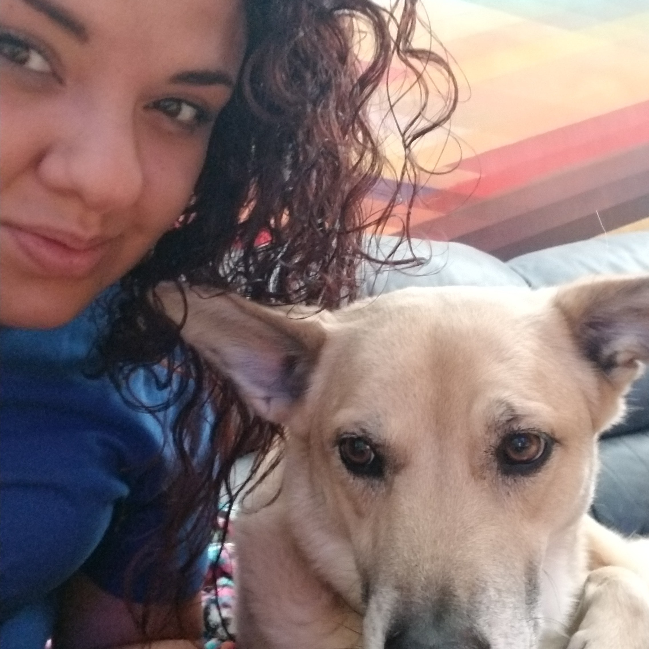 Allicen's dog day care