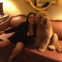 Angela's dog boarding