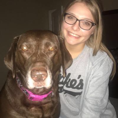 Suzanne & Casey's dog boarding