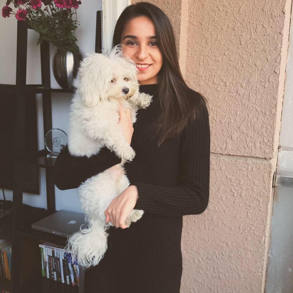 Aparajita's dog day care