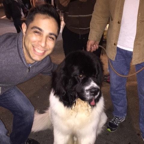dog walker Kareem