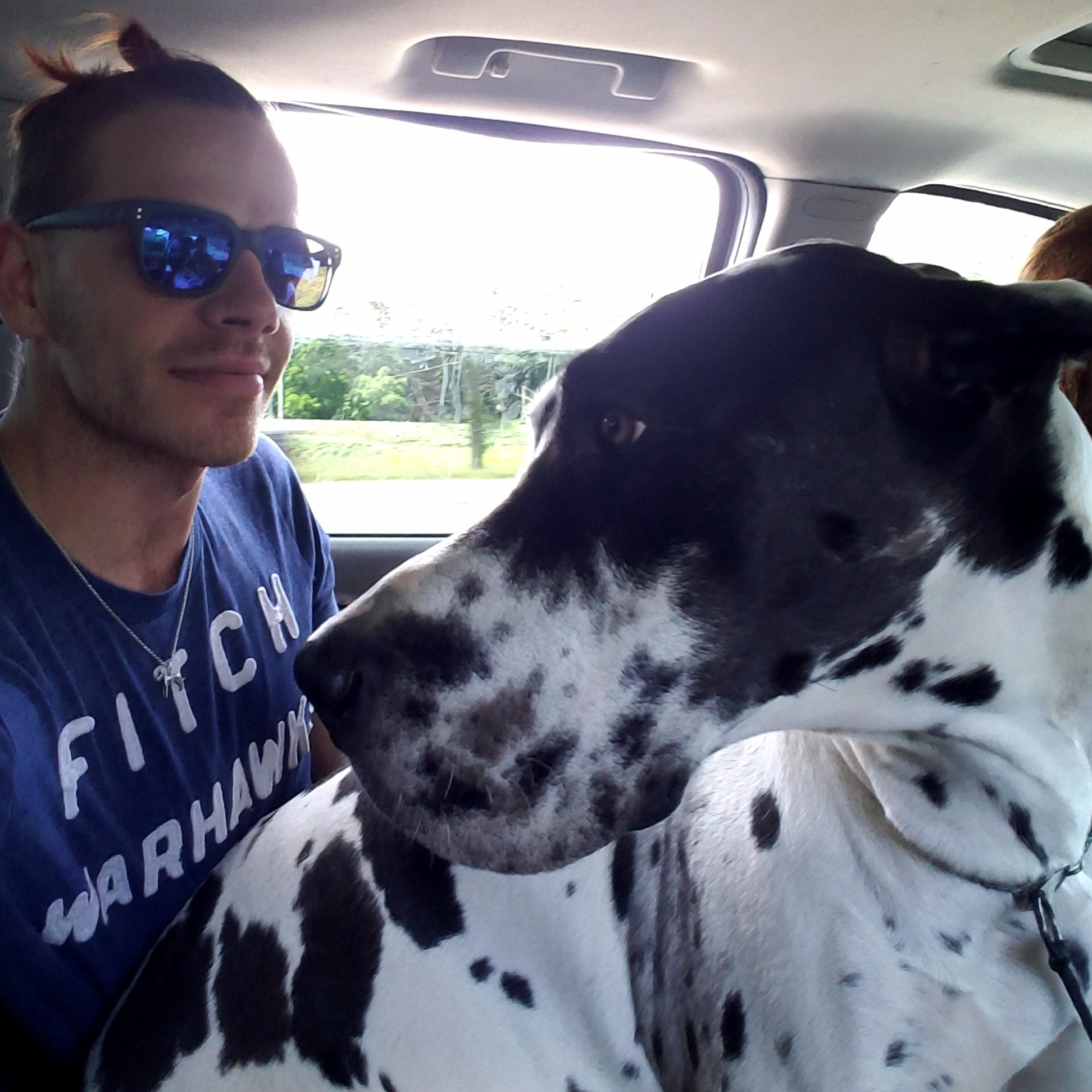 dog walker Shawn