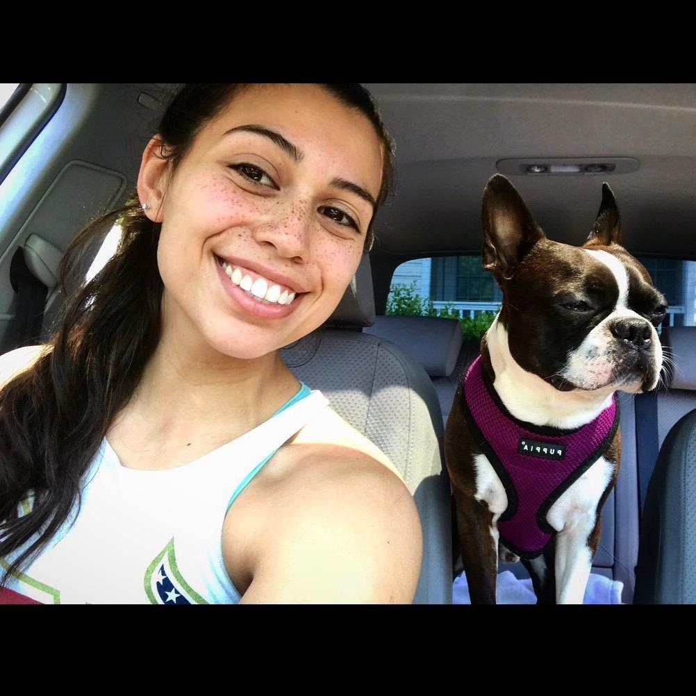 Melanie's dog boarding