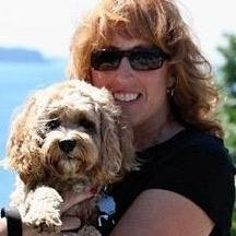 Jodi's dog boarding