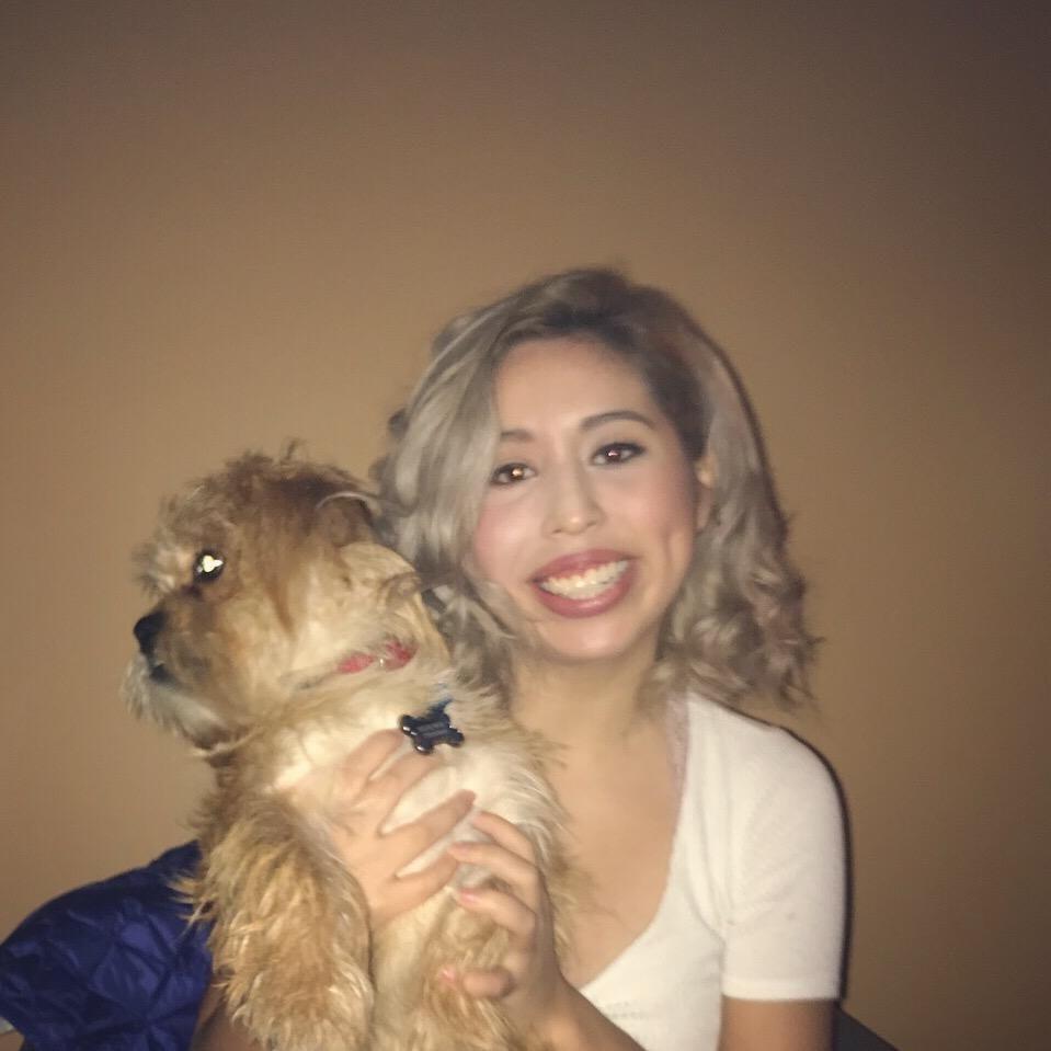Sarai's dog day care