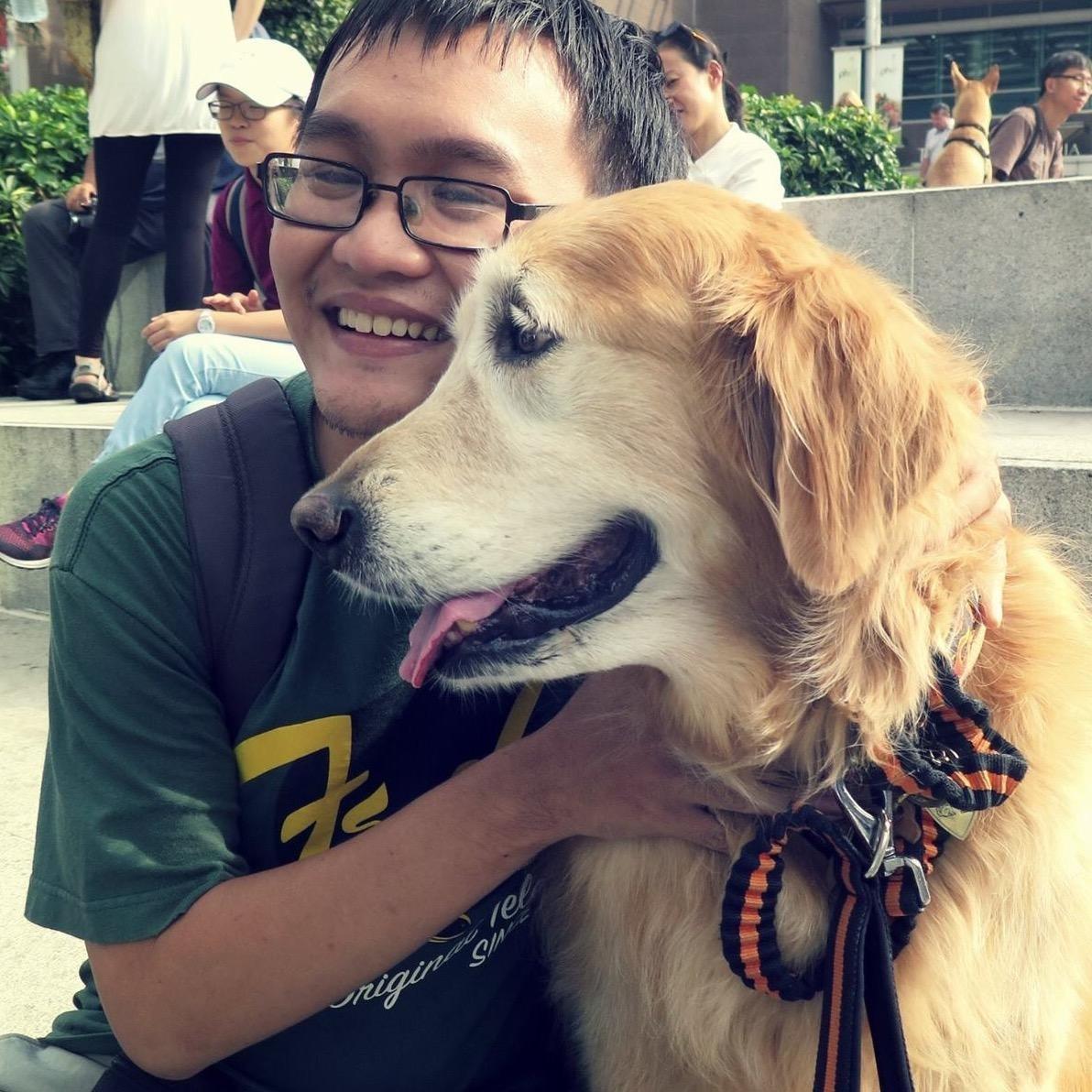 dog walker Trung