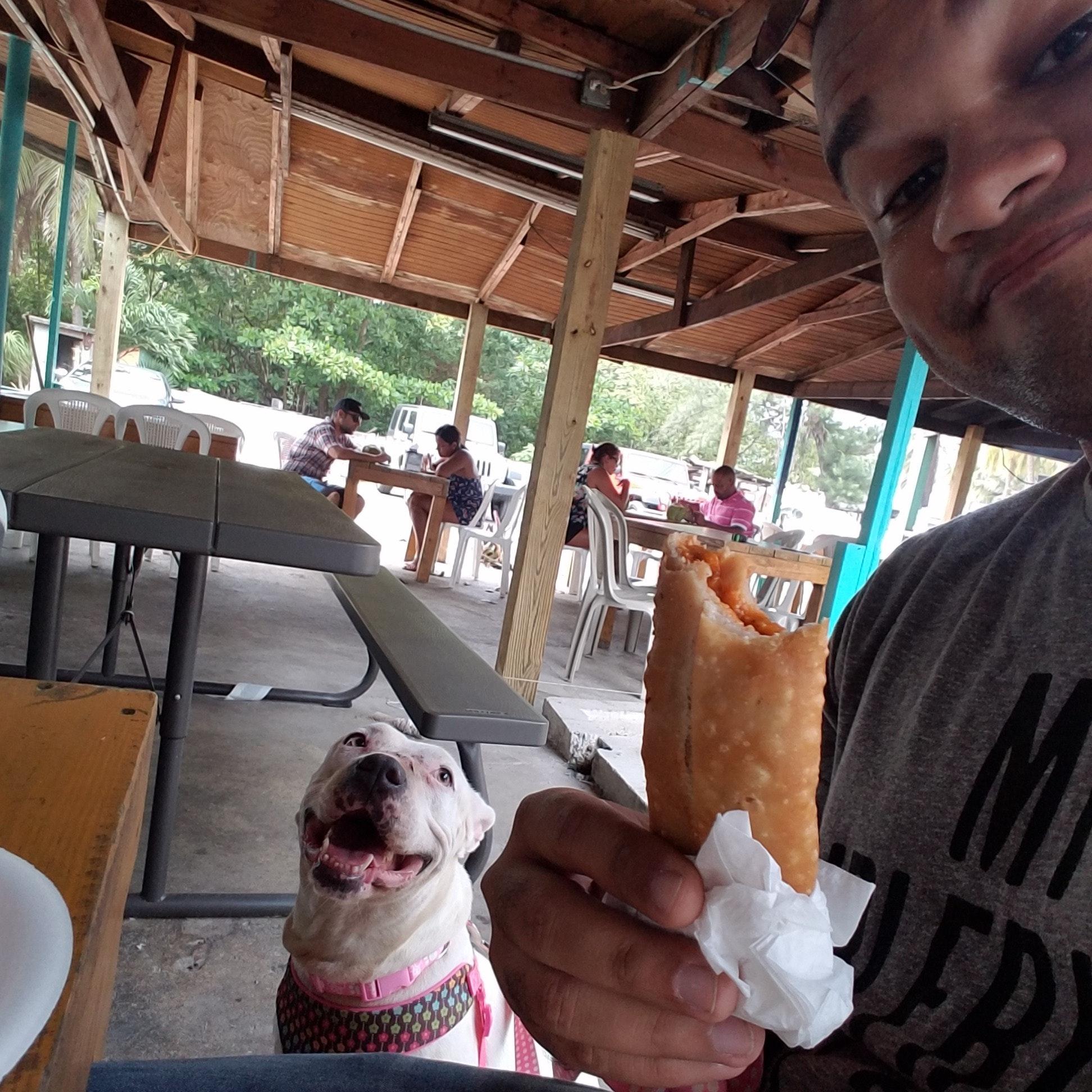 Lenny's dog day care
