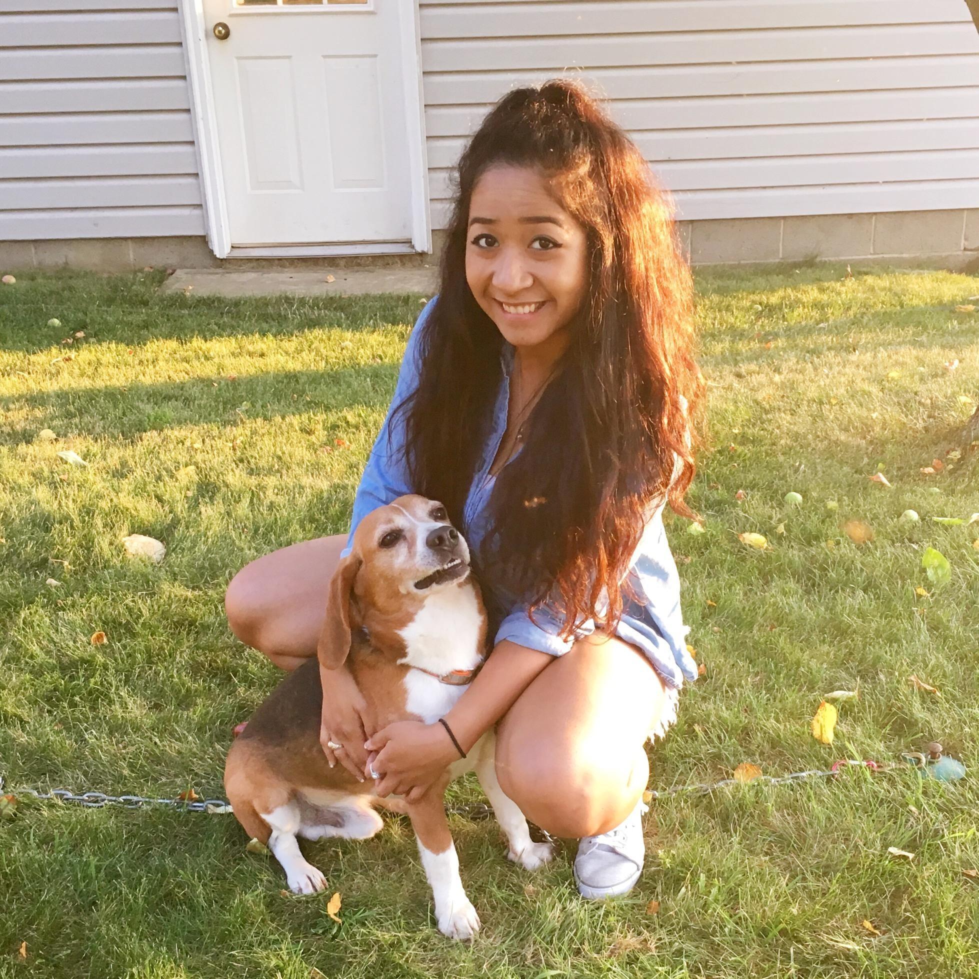 Joanna's dog day care