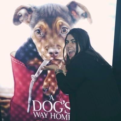 Ludmila's dog day care