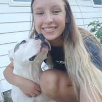 Kelsie's dog boarding