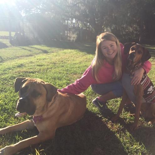 Helen's dog boarding
