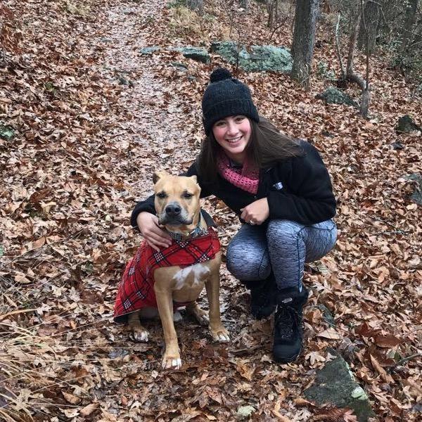 Nadine's dog day care