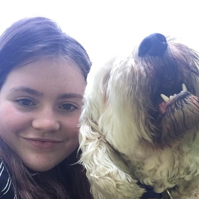 Bea's dog boarding