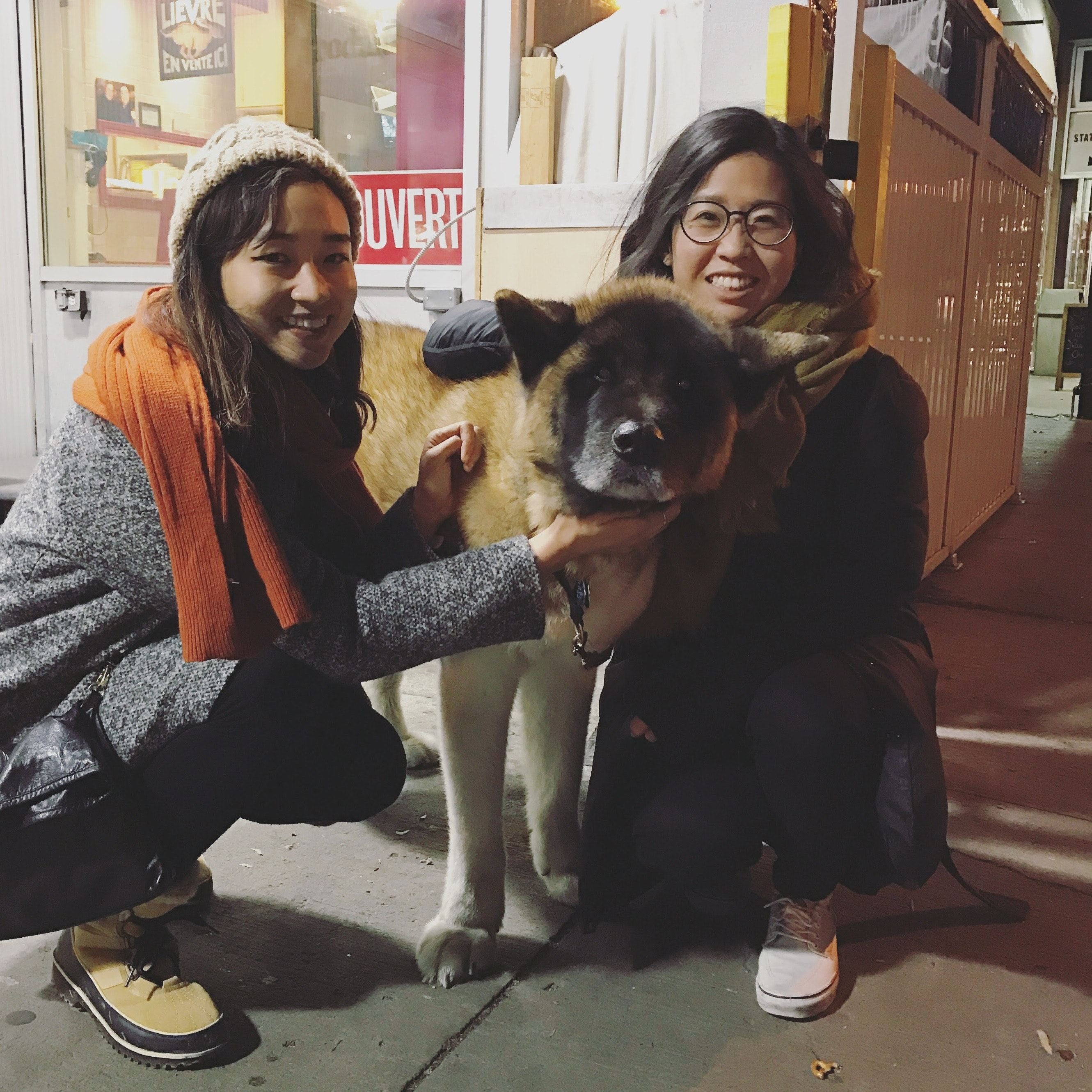 Connie's dog boarding