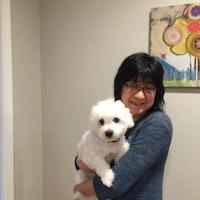 Hsing-Hui's dog boarding