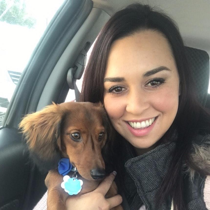 Alyssia's dog day care