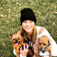 Sarah's dog boarding