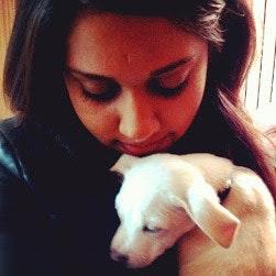 house sitter Shivani