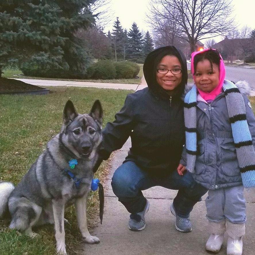Ayana's dog boarding