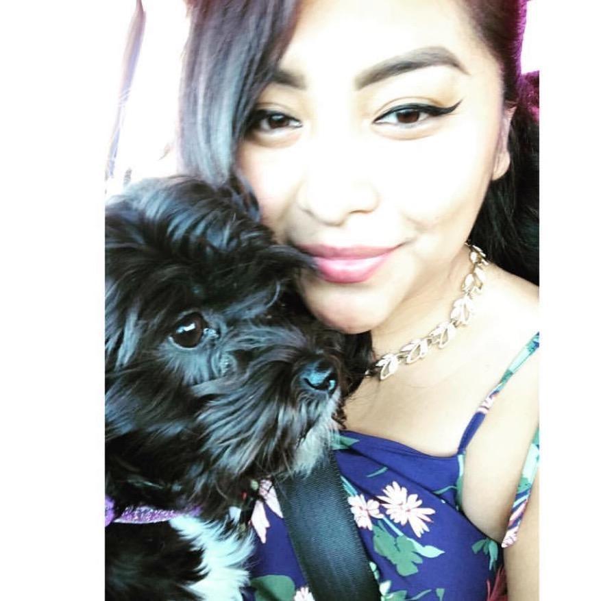 Aileen's dog boarding