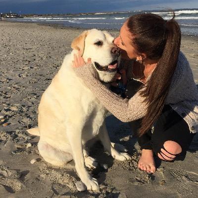 Maddie's dog day care