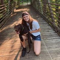 Addie's dog day care