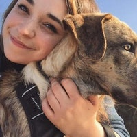 Jahna's dog boarding