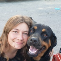 Heidi's dog boarding