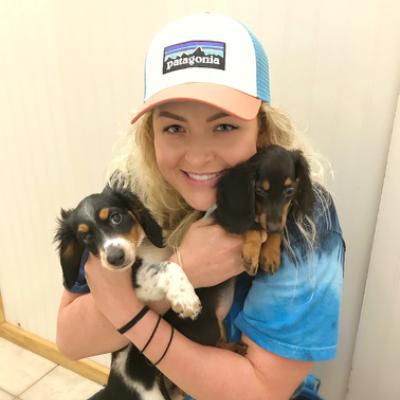 Jaci's dog day care