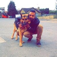 Asim's dog boarding