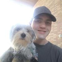 Jon's dog boarding