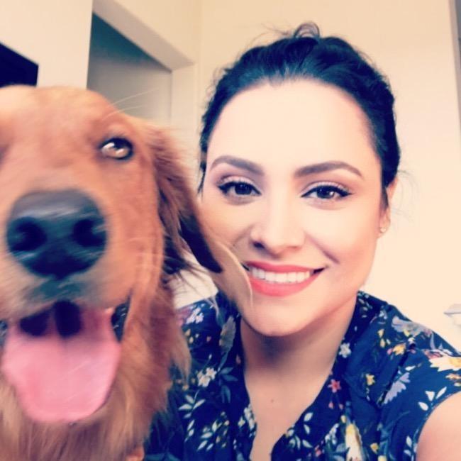 Yatzee's dog day care