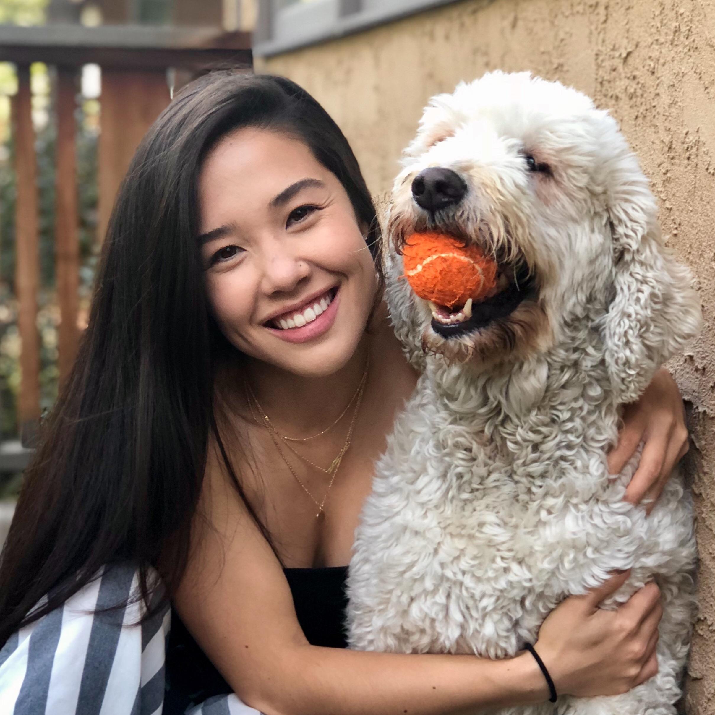 Michelle's dog boarding