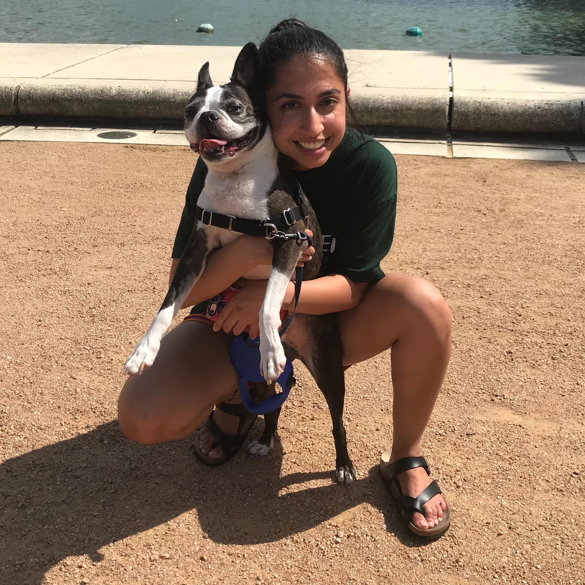 Shanzeh's dog day care