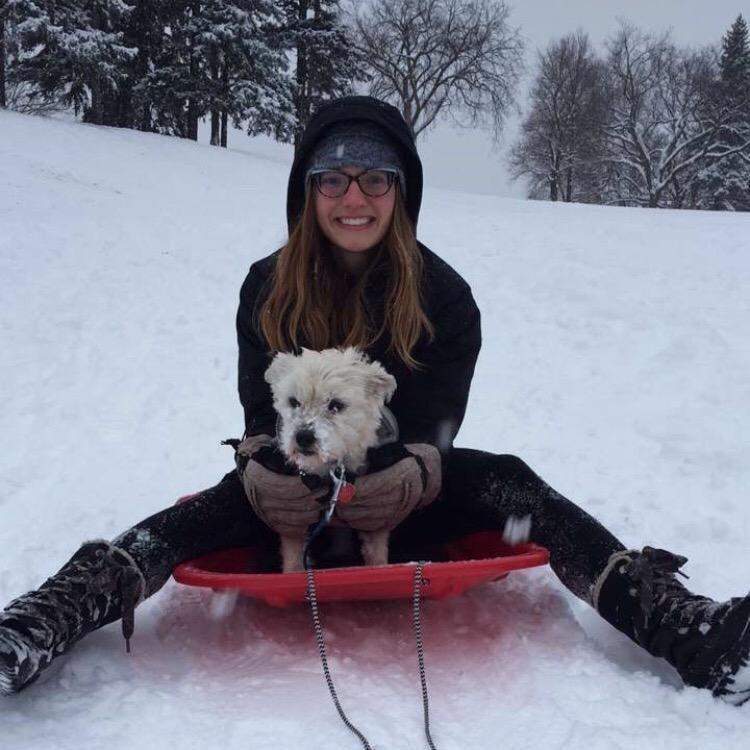 Emilia's dog boarding