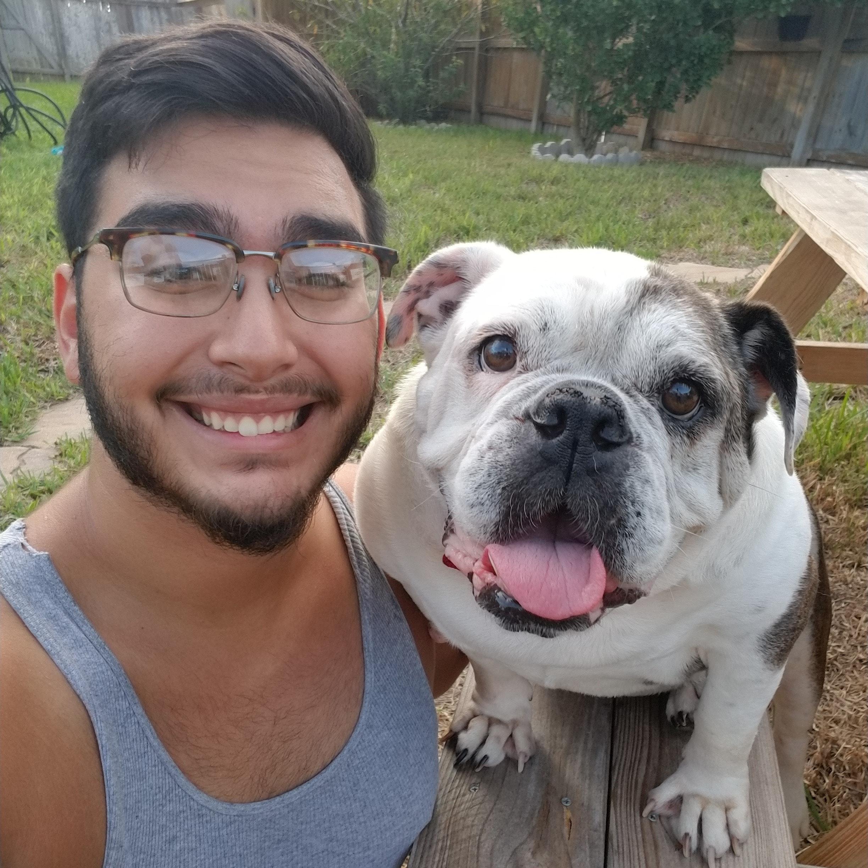 Salvador's dog day care