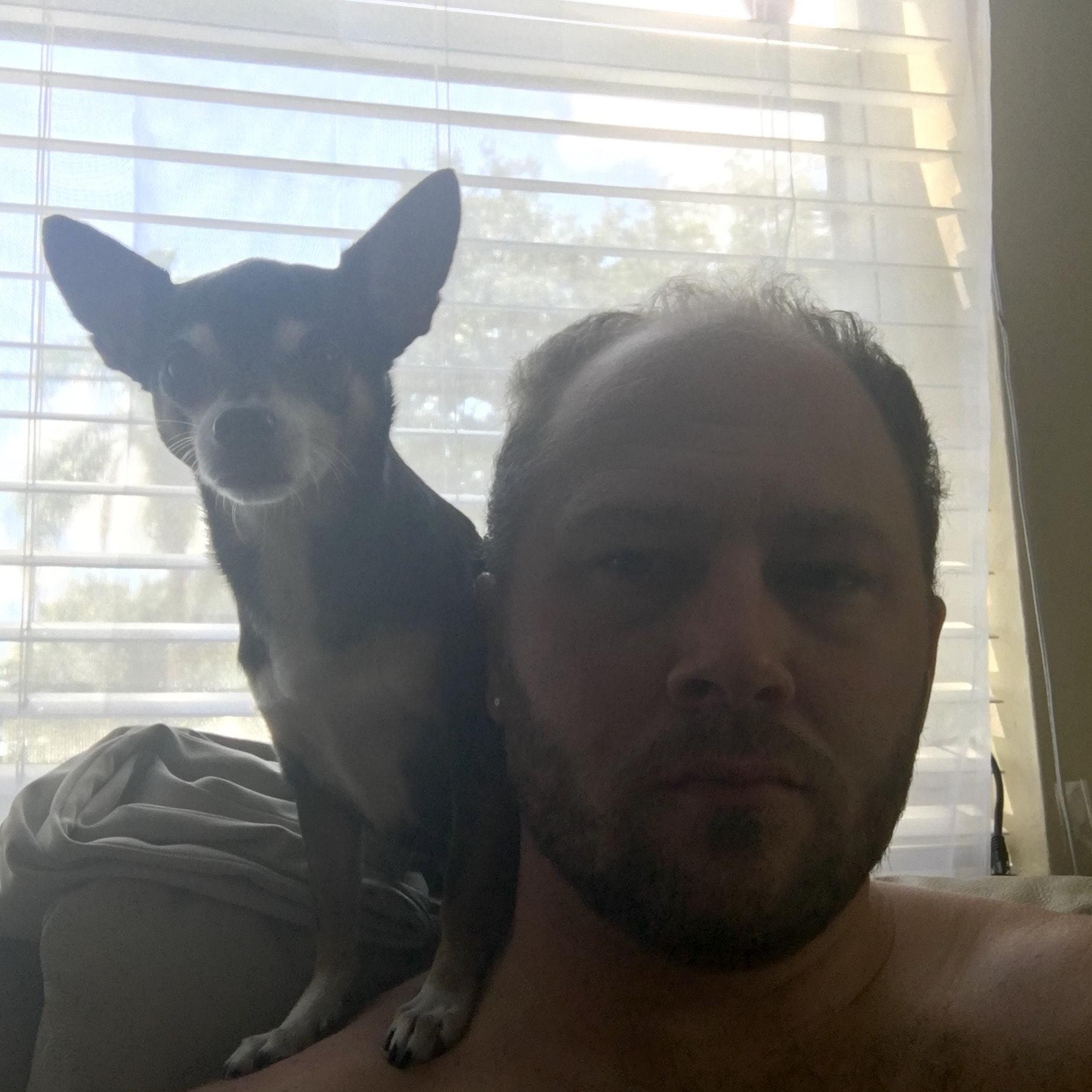 dog walker Russell