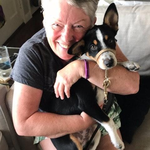 dog walker Joanne