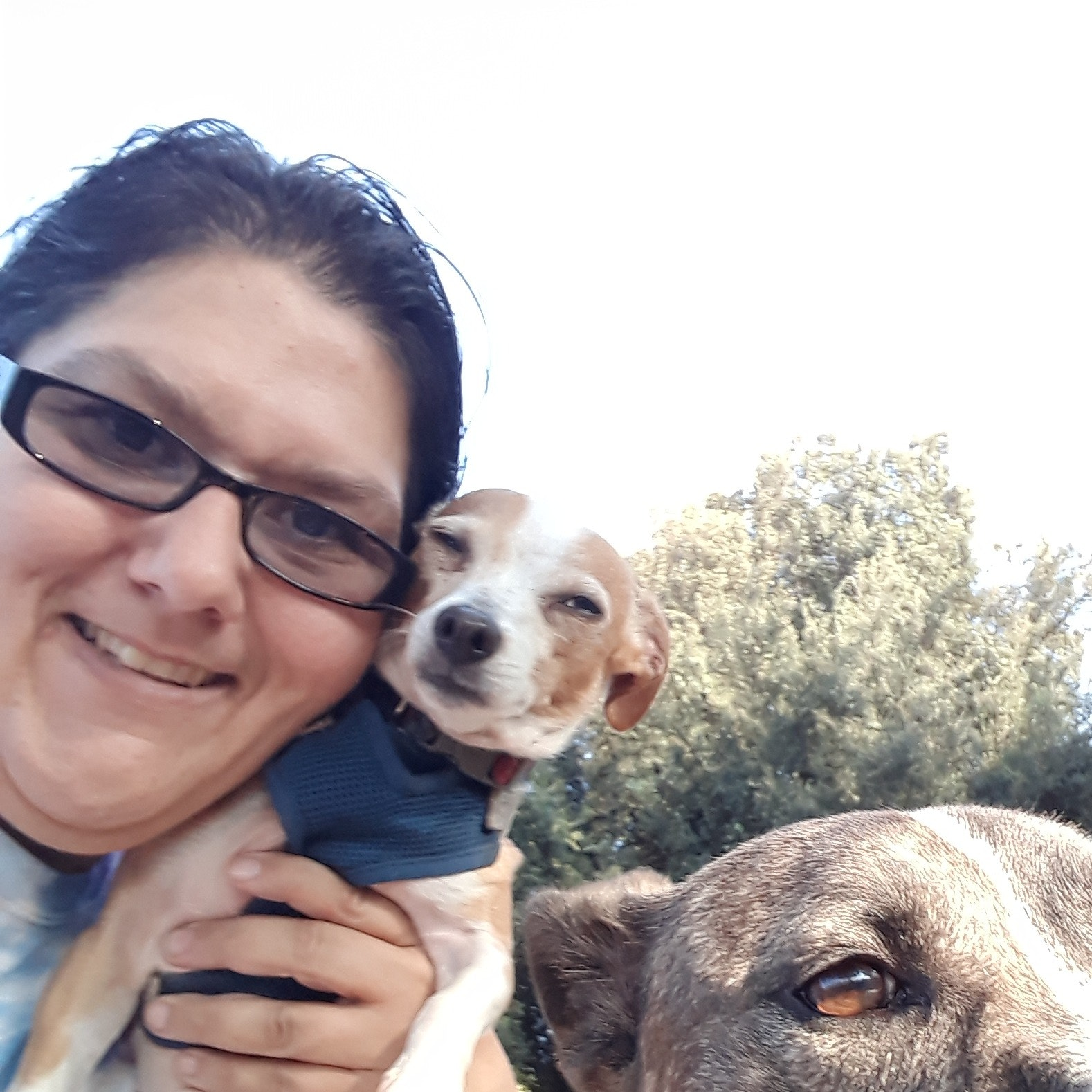 pet sitter Latisha
