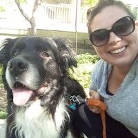 Kaprice & Sean's dog boarding
