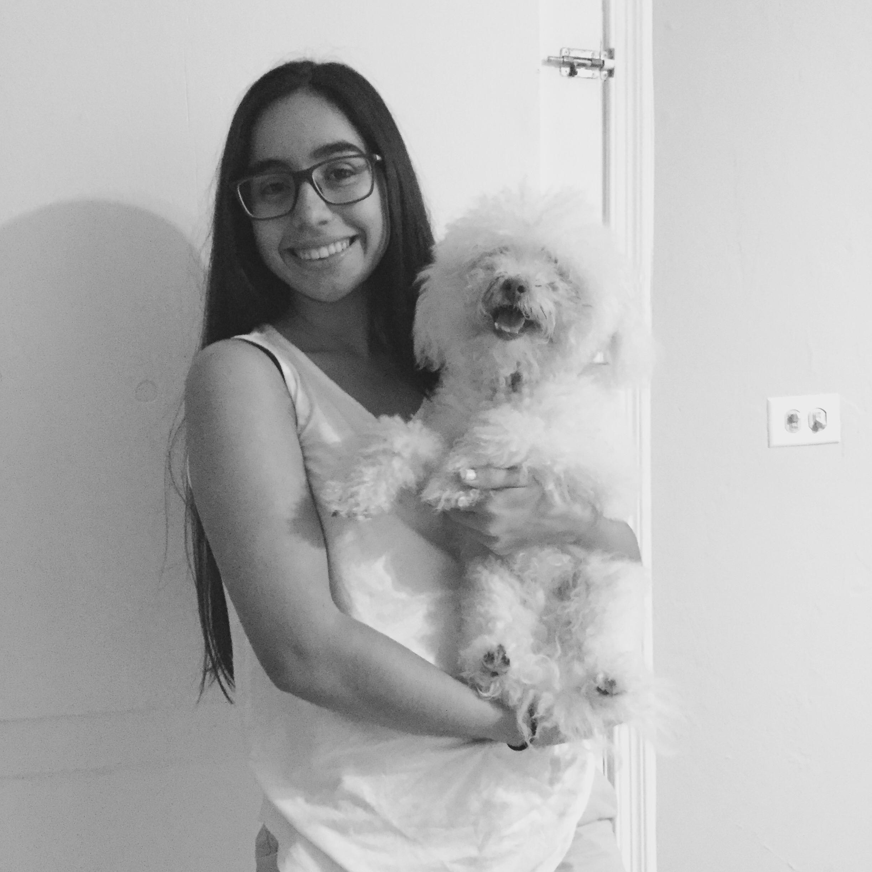 Bianca's dog day care
