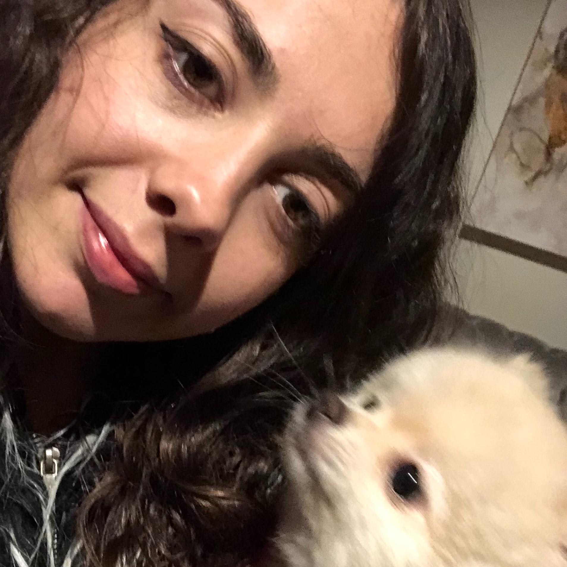 Blertina's dog day care