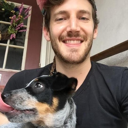Sean's dog day care