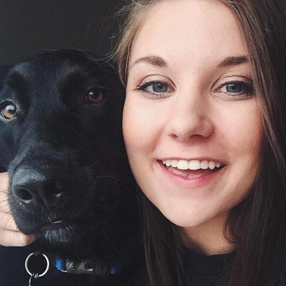 Brandi's dog day care