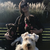 Nadia's dog boarding