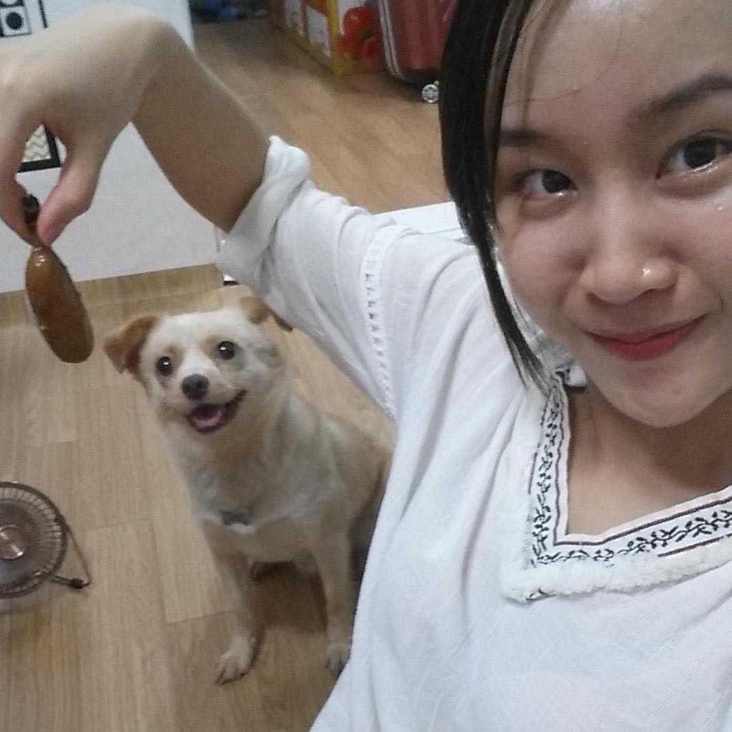 Huong's dog day care