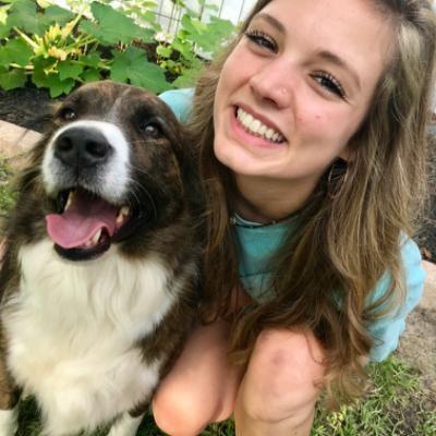 Kerri's dog day care