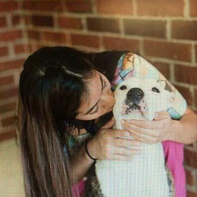 Vidi's dog day care