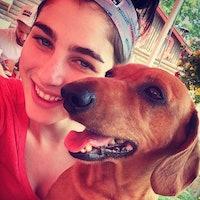 Tamar's dog boarding